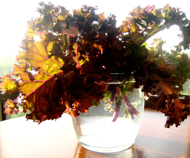 Red Kale Bouquet
