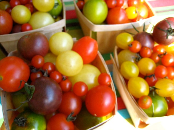 String of pearl tomatoes