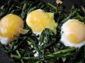 Dandelion Greens, Eggs and Parmesean Cheese