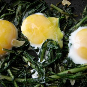 Dandelion Greens, Eggs and ParmeseanCheese