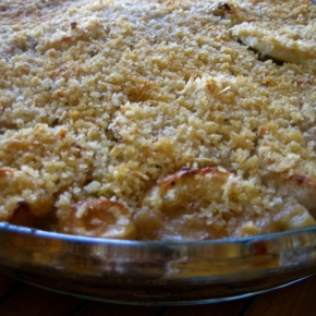 Parsnip Potato Leek Gratin and Gandhi