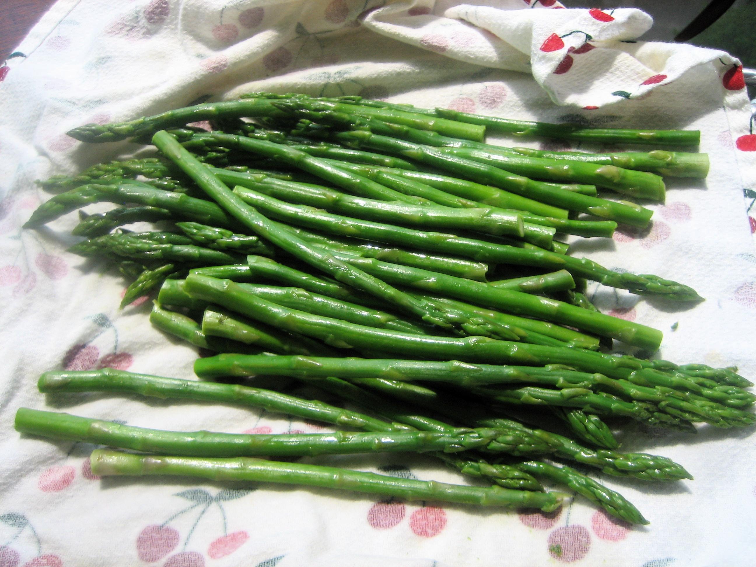 Spring Chill Asparagus Vichyssoise Italian Handful